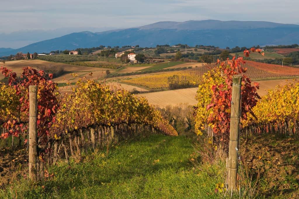 Autum in Umbria