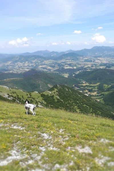 What to see in Umbria: everything you need for a great holiday