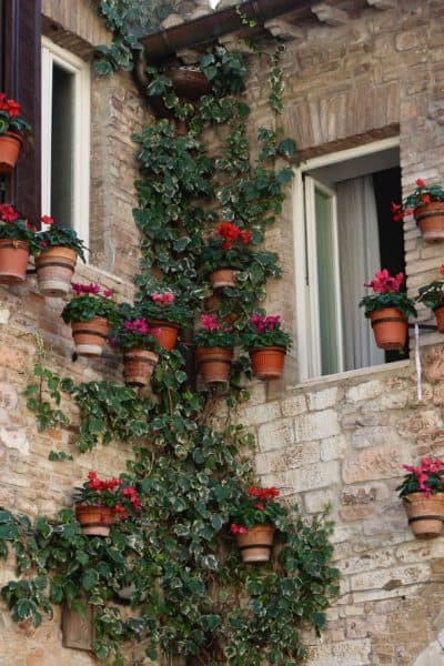 5 Restaurants in Assisi that will make you want to stay longer
